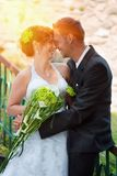 Groom kissing bride on their wedding day. Stock Image