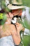 Groom kissing bride on their wedding day. Royalty Free Stock Photos