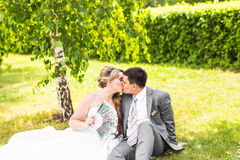 Groom kissing bride on their wedding day.  Stock Photography