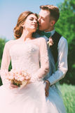 Groom kissing bride to cheek. At sunny day Stock Photography