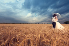 Groom kissing the bride in wheat field. Young women in wedding dress. Wedding photography. Young in loved just married couple Stock Images