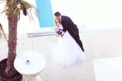 Groom kissing his bride near the pool Royalty Free Stock Photos