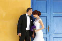 Groom kissing his bride Stock Images