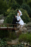 Groom on knees. Bride and groom on the bridge royalty free stock photography