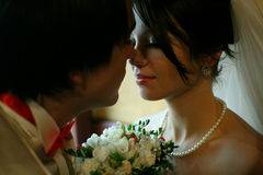 Groom leans to the tender bride`s lips for a kiss.  Royalty Free Stock Photo