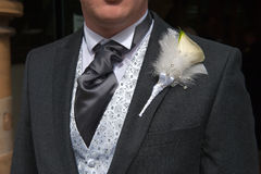 Groom with lily buttonhole flower Stock Photography