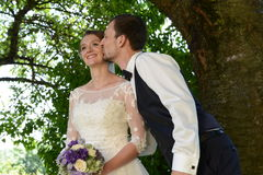 Groom in love is kissing the bride Royalty Free Stock Photos