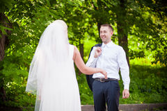 Groom meets the bride Royalty Free Stock Photos