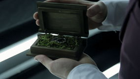 Groom open box with wedding rings on moss, green grass indoor. Hands of man in snow shirt with long sleeves hold brown wooden casket, then he lift up lid. In stock footage