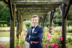 Groom in park rosarium next to beautiful pink roses. Royalty Free Stock Images