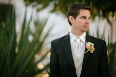 The Groom Royalty Free Stock Images
