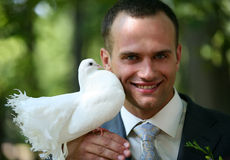 Groom with the pigeon Royalty Free Stock Image
