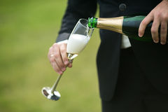 Groom pours a glass of champagne Stock Image