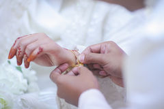 Groom put a jewelry to bride`s hand. Royalty Free Stock Photos