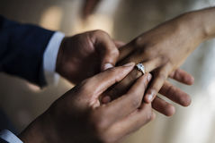 Groom Put on Wedding Ring Bride Hand Stock Image