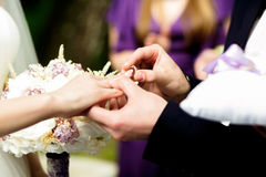 Groom puts a wedding ring on bride`s delicate finger.  Royalty Free Stock Photo