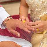 The groom puts the wedding ring Stock Photos