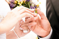 Groom putting ring on brides hand Royalty Free Stock Photos