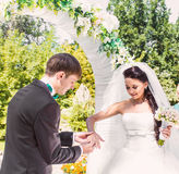 Groom putting a wedding ring on bride's finger.  royalty free stock photo
