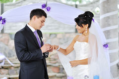 Groom putting a wedding ring on a bride's finger. Outdoors Stock Photography
