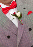 Groom with red bow tie Royalty Free Stock Photo