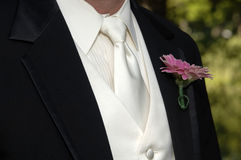 Groom's black tux and tie Stock Images