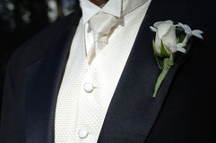 Groom's black tux and tie. Looking sharp Royalty Free Stock Photography