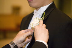 Groom's boutionniere Stock Images