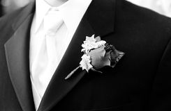 Groom's boutonni�re Royalty Free Stock Images