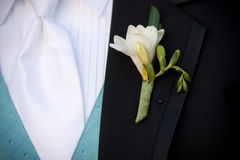 Groom's Boutonniere Royalty Free Stock Photo
