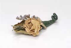 Groom's Boutonniere. Dried boutonniere from the groom's wedding day Royalty Free Stock Images