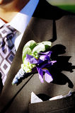 Groom's boutonniere Royalty Free Stock Photography