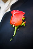 Groom's boutonniere. Red rose boutonniere pinned on groom's lapel Royalty Free Stock Images