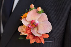 Groom's Boutonniere. Groom's corsage - Flower Arrangement, orchid, rose Royalty Free Stock Photography