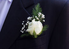 Groom's Boutonniere Royalty Free Stock Photos