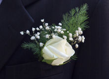 Groom's Boutonniere Royalty Free Stock Images