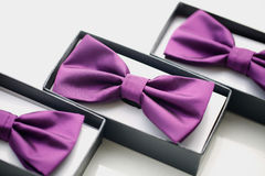 Groom`s bowtie in little box Royalty Free Stock Photos