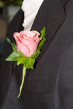 Groom's Buttonhole. Pink Rose pinned on the Groom's buttonhole royalty free stock image