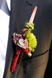Groom's Corsage. To a bridegroom's lapel of his wedding jacket Stock Photos