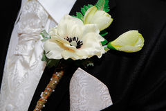 Groom's Corsage Royalty Free Stock Image