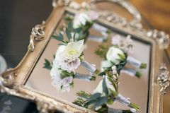 The groom`s corsage. At Wedding party stock photo