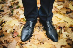 Groom's feet with wedding shoes on the ground in autumn. Closeup groom's wedding shoes on the ground with golden leafs in autumn Royalty Free Stock Photo