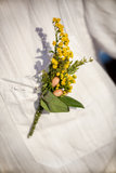 The groom's flower. Stock Photography
