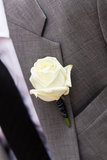 The groom's flower. Royalty Free Stock Photo