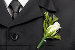 Groom's flower close-up Royalty Free Stock Photo