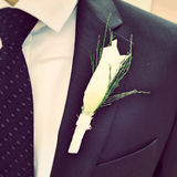 Groom's flower close up Royalty Free Stock Images