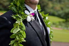 Groom's flowers Royalty Free Stock Image
