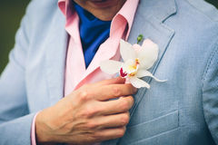 A groom's hand arranging boutonniere Stock Photos