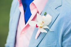 Groom's hand arranging boutonniere pink flower on suit Stock Photo