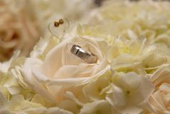 Groom's ring on Bride's flower bouquet. A closeup of groom's ring on bride's bouquet of flowers Royalty Free Stock Image